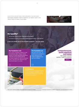 Website design Image 8
